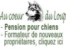 Pension pour chiens Broc